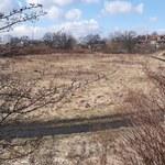 W Zabrzu ratują stare boiska. Jedno z nich zmieni się w królewnę śnieżkę