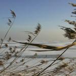 W Zalewie Zemborzyckim odnaleziono ciało wędkarza. 37-latek zaginął na początku grudnia