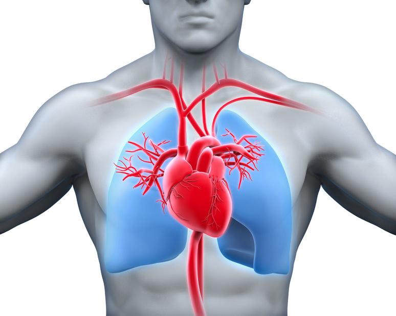 Wady i choroby serca /©123RF/PICSEL