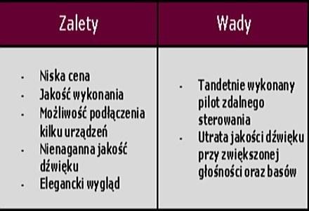 Wady i Zalety /PCArena.pl