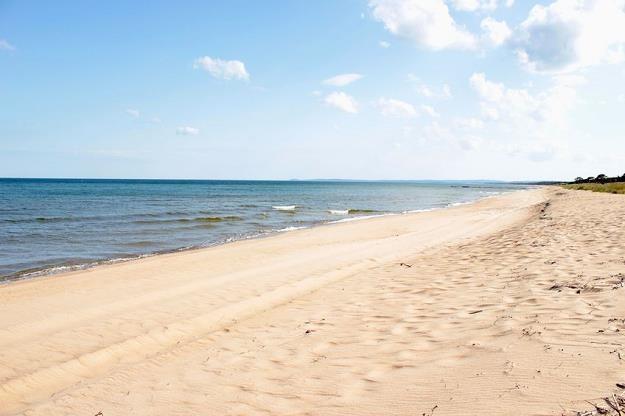 Wakacje nad Bałtykiem wybiera coraz więcej turystów zza granicy /©123RF/PICSEL