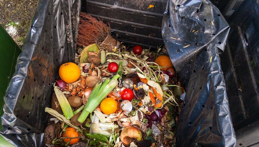 Walka z marnowaniem żywności na poziomie śmietnika