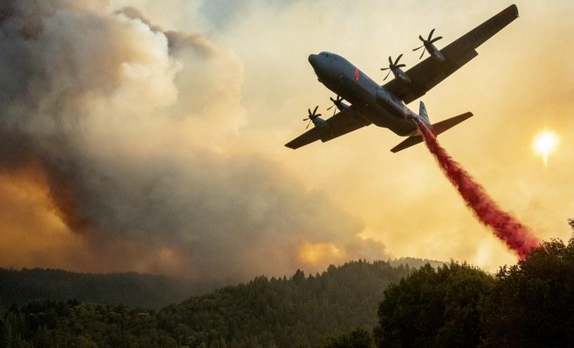 Walka z pożarami lasów w Kalifornii /AFP