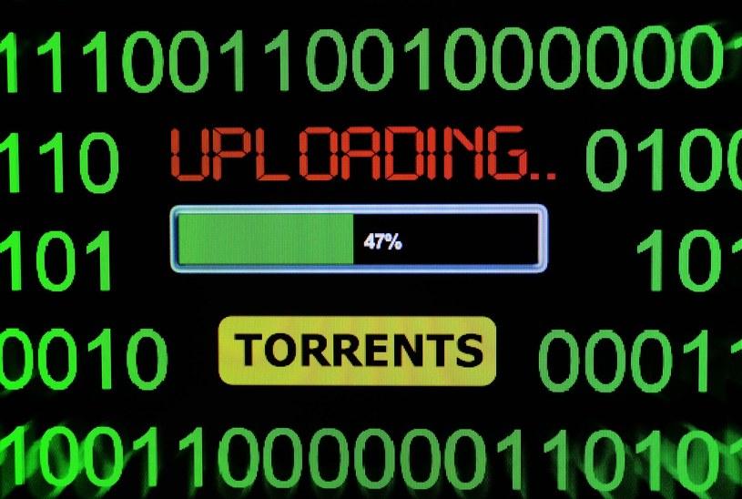 Walka z torrentami i wymianą plików przez sieć P2P trwa /123RF/PICSEL