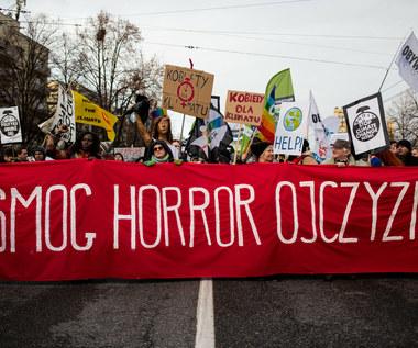 Walka ze smogiem i... hejtem. Koszmar działaczy społecznych w Polsce