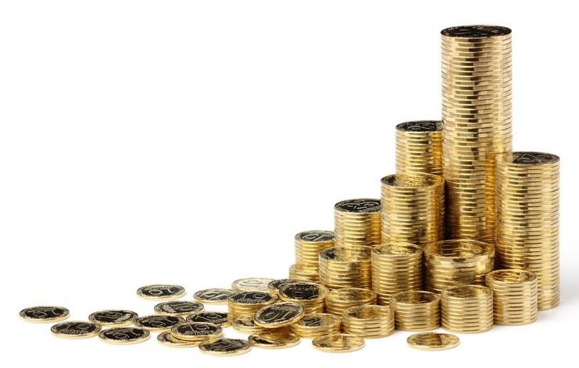 Waluta Bitcoin nie podoba się władzom Rosji i wielu innych krajów. /123RF/PICSEL