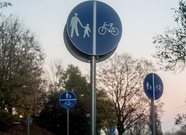 Wandalom szczególnie przeszkadzały znaki drogowe / Zdjęcie ilustracyjne /Andrzej Iwańczuk/Reporter /East News