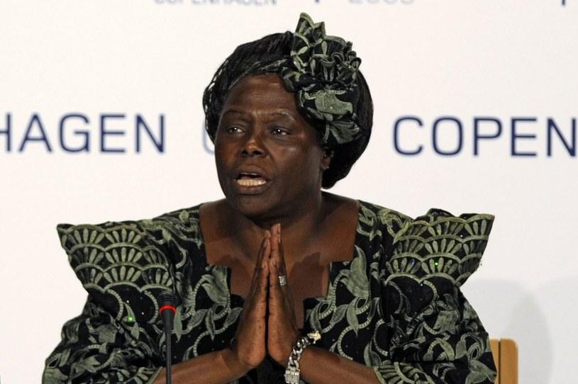 Wangari Maathai /AFP