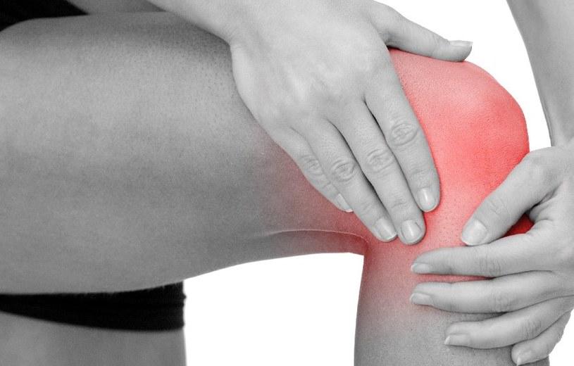 Wapń jest niezbędny dla zdrowia kości /123RF/PICSEL
