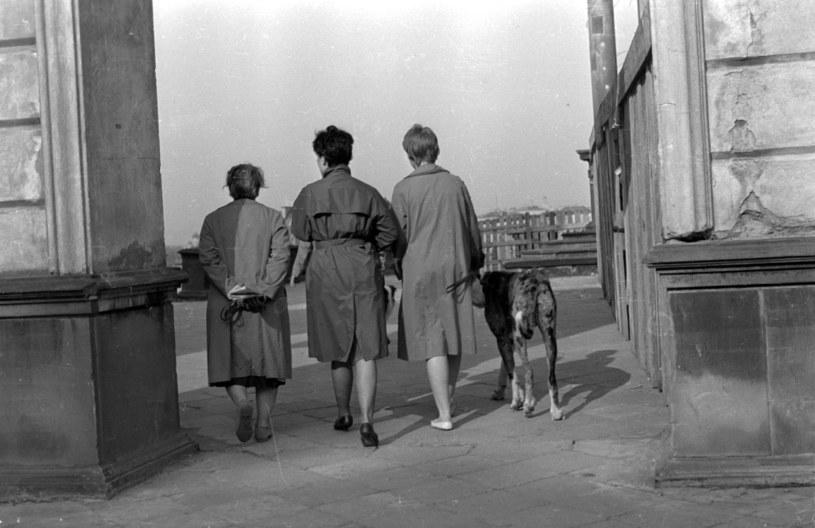 Warszawa, 1962 r. Kobiety w plaszczach ortalionowych /Bogdan Łopieński /Agencja FORUM