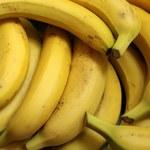 Warszawa: Groźny pająk w bananach w supermarkecie