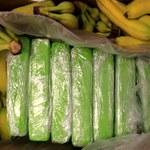 Warszawa: Kokaina ukryta w bananach trafiła do sklepów. Akcja policji