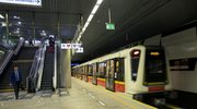 Warszawa: Znaleziono szczątki mamuta na budowie metra