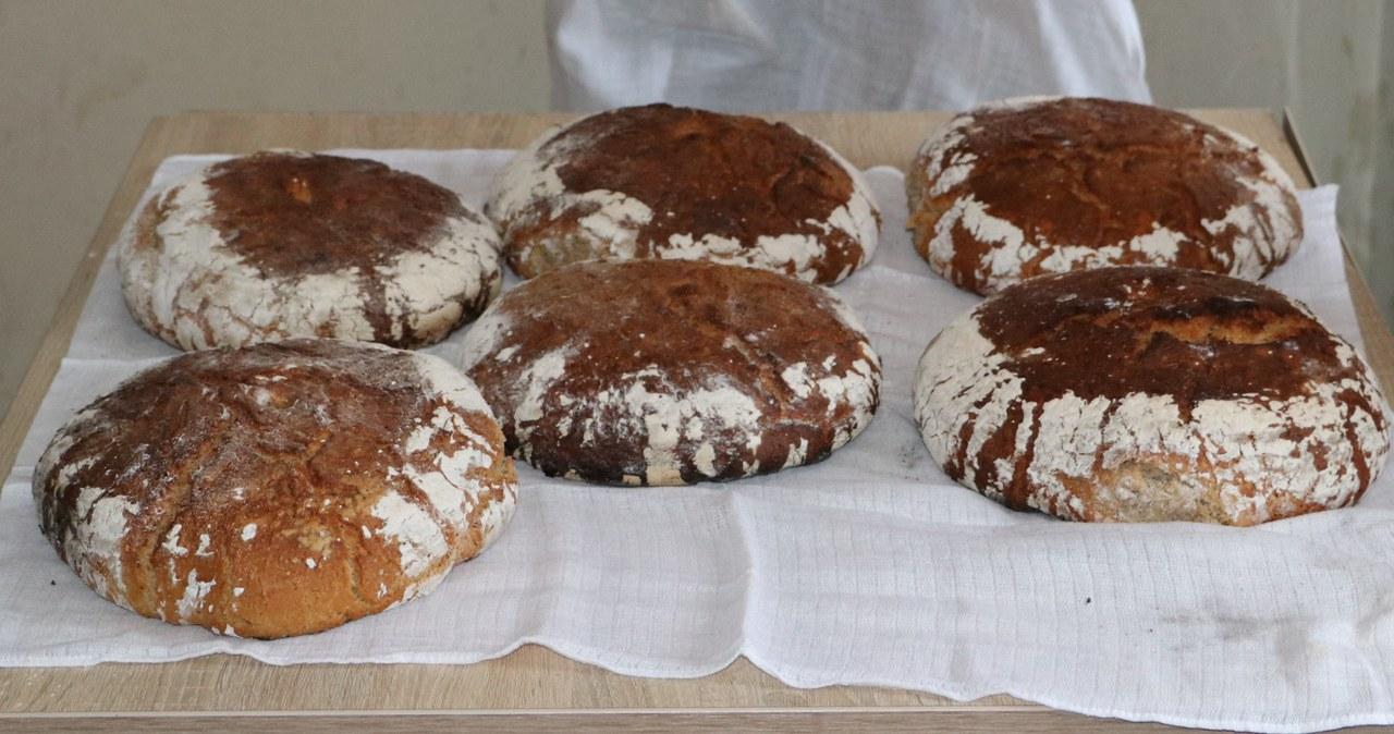 Warsztaty z pieczenia chleba w Bogdanówce
