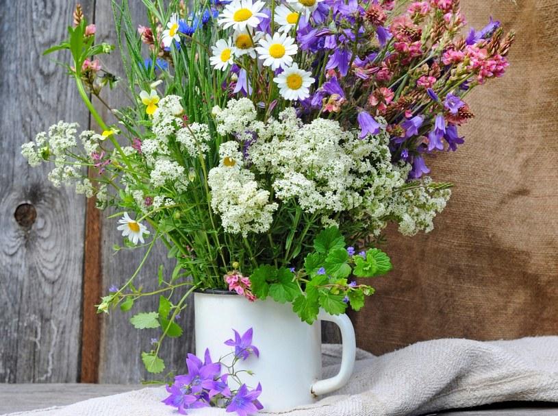 Warto jest otaczać się kwiatami oraz ziołami, aby wzmocnić swoją więź z naturą /123RF/PICSEL