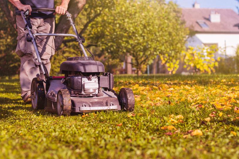 Warto jest wygospodarować choć trochę czasu na jesienne prace w ogrodzie /123RF/PICSEL