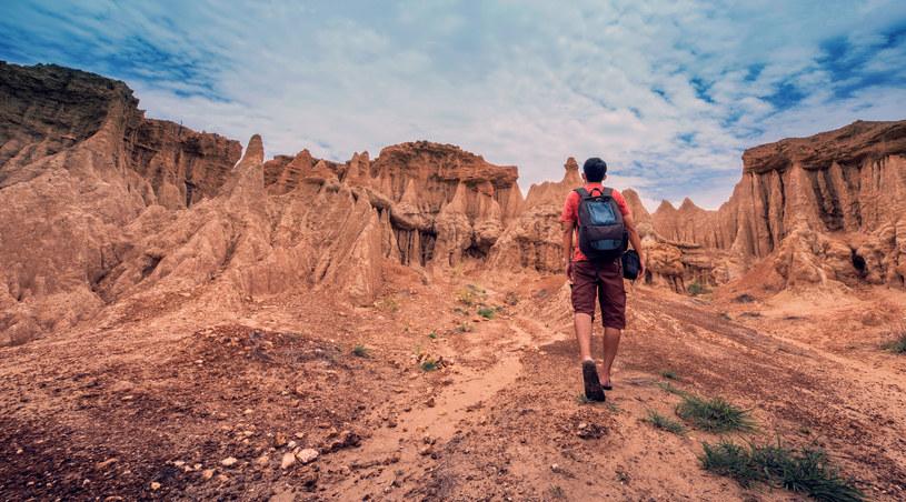 Warto podróżować w sposób odpowiedzialny! /123RF/PICSEL