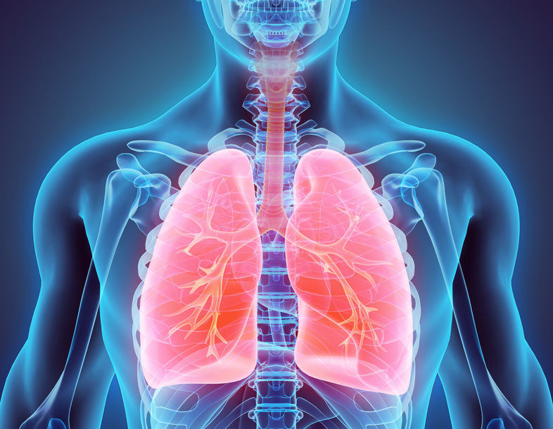 Warto regularnie oczyszczać płuca z toksycznych substancji /123RF/PICSEL