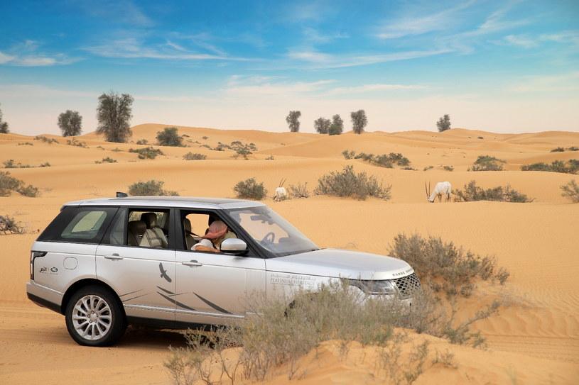 Warto wybrać się samochodem terenowym na pustynne safari /materiały prasowe