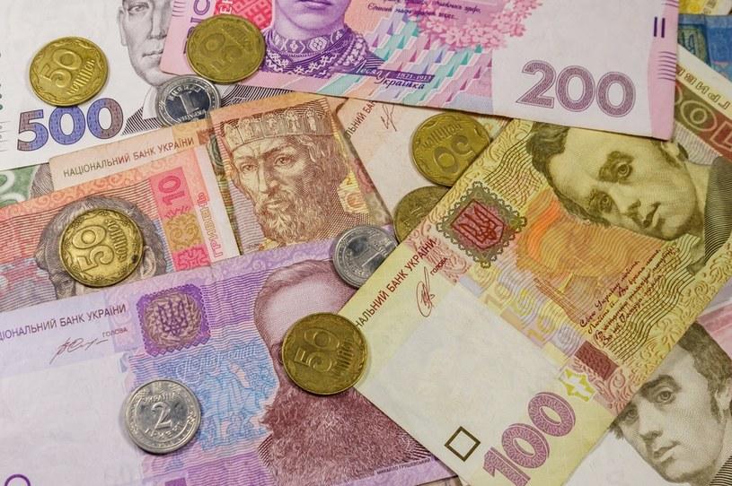 wartość czystych aktywów przypadających na jednego mieszkańca Ukrainy to 78 tys. dolarów /123RF/PICSEL