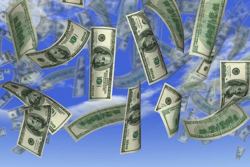 Wartość kuponu oszusta wynosiła 14 mln dolarów /Zdj. ilustracyjne /123RF/PICSEL