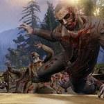 WarZ: Twórcy gry kopiują League of Legends?