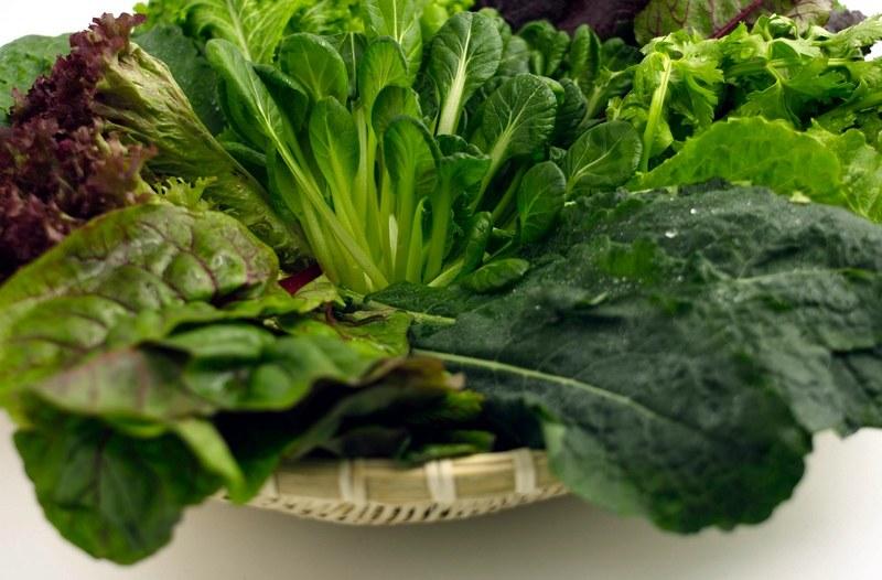 warzywa na poprawę mózgu /© Photogenica
