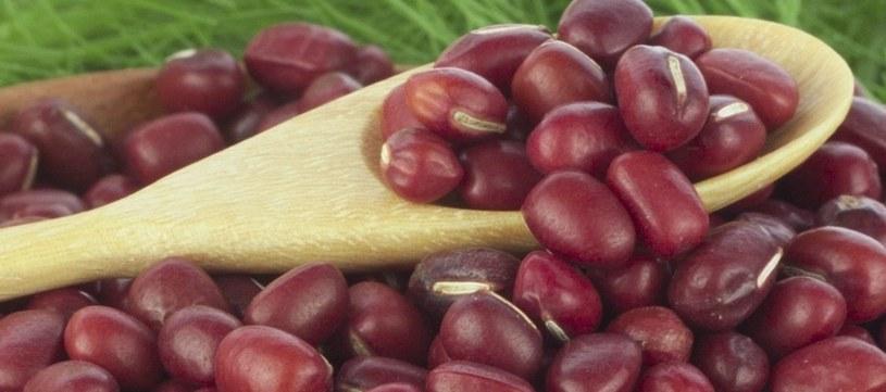 Warzywa strączkowe powinny być pożądane w każdej diecie /123RF/PICSEL
