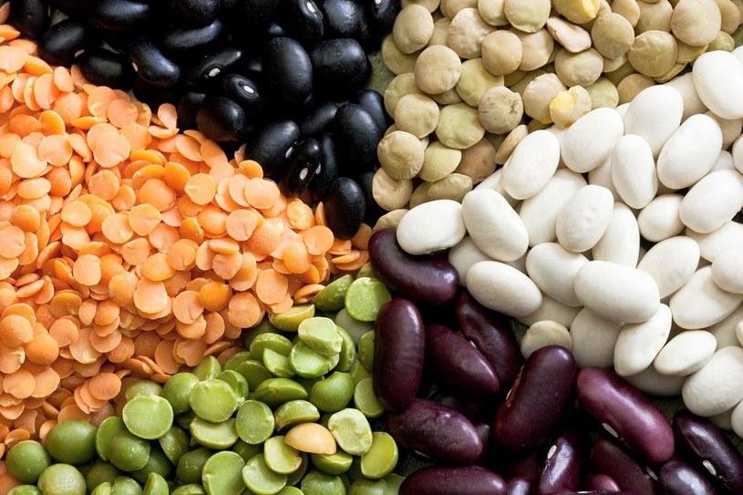 Warzywa strączkowe są świetnym źródłem witamin z grupy B /123RF/PICSEL