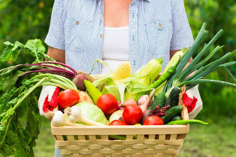 Warzywa z grządki /©123RF/PICSEL