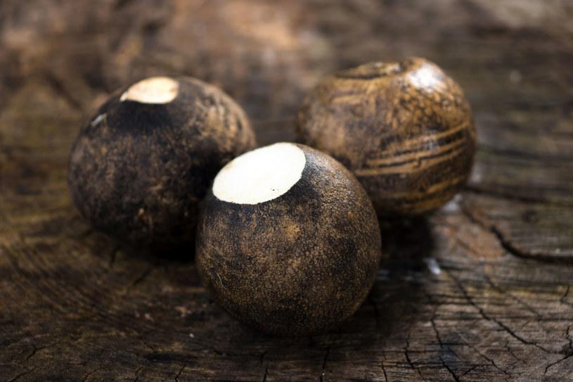 Warzywo to można piec, gotować, robić z niego piure, zupy i potrawki /123RF/PICSEL