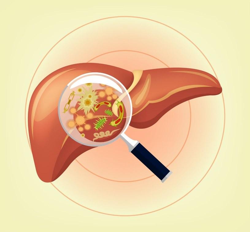 Wątroba to narząd podatny na różne schorzenia /123RF/PICSEL