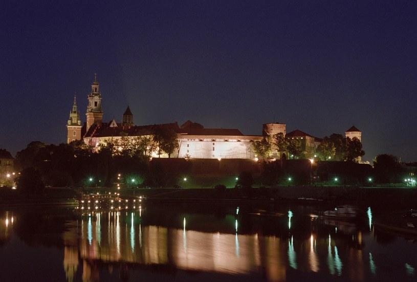Wawel, zdj. ilustracyjne /Mariusz Makowski /Agencja FORUM