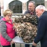 Waży prawie 70 kg - większego grzyba dotąd nie znaleziono!