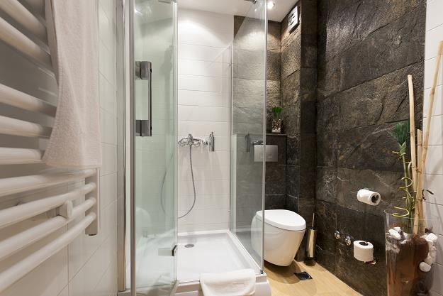WC razem z łazienką czy osobno? /©123RF/PICSEL