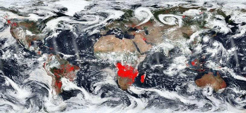 Według Ala Gore'a zmiany w klimacie, i nie tylko, zachodzą cały czas /East News
