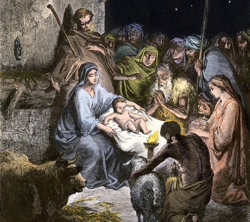 Według badaczy zarówno zwierzęta, jak i sama stajenka to elementy dopisane do tej historii długo po narodzinach Jezusa /East News