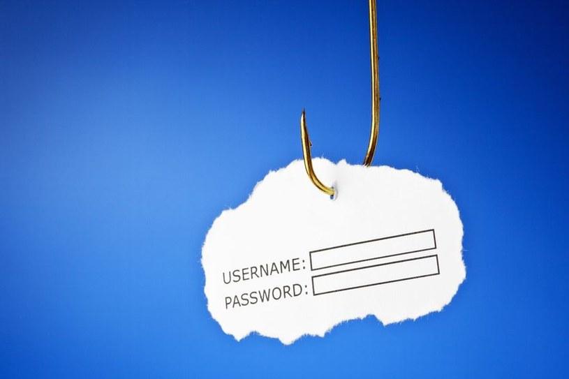 Według G Data, klienci serwisu Allegro mogą paść ofiarą phishingu, czyli wyłudzania poufnych informacji /123RF/PICSEL