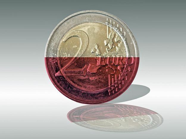 Według Hausnera obecnie nie należy pochopnie przedstawiać daty przyjęcia wspólnej waluty /©123RF/PICSEL