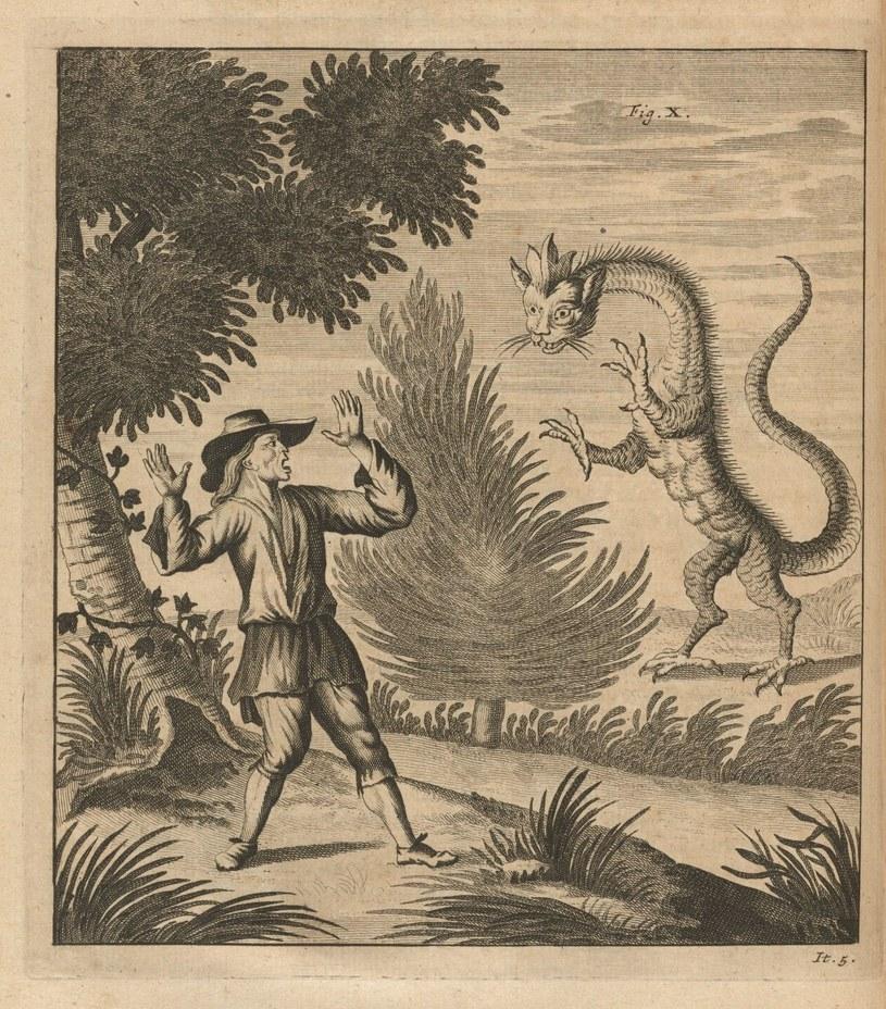 Według ludowych opowieści zwierzę było niebezpieczne dla człowieka /Wikimedia Commons /domena publiczna