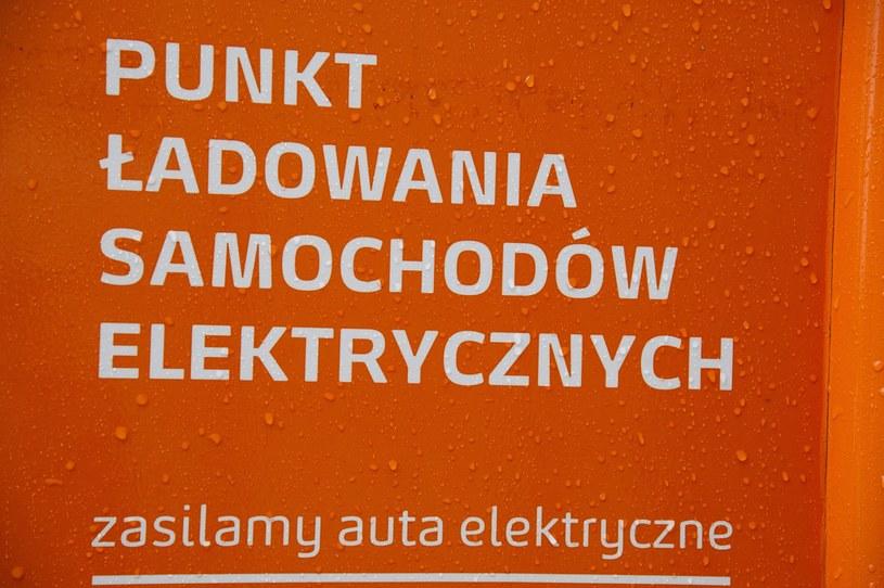 Według ministra główny problem to brak punktów ładowania. Według ekspertów - ceny aut elektrycznych /Wojciech Stróżyk /Reporter