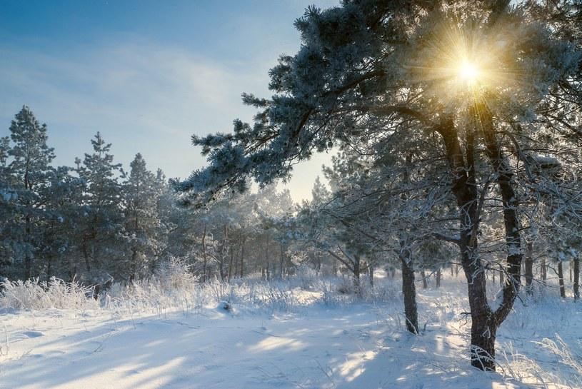 Według synoptyków, w przyszłym tygodniu nastąpi ochłodzenie /123RF/PICSEL