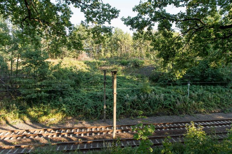 """Według znalazców """"złoty pociąg"""" jest ukryty na terenie Wałbrzycha /Maciej Kulczyński /PAP"""