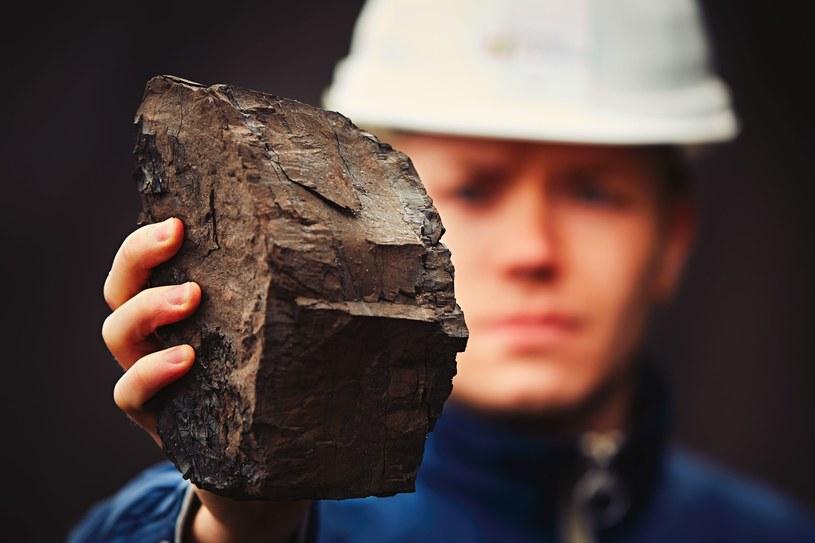 Węgiel brunatny znalazł się na celowniku ekologów w całej Europie /123RF/PICSEL