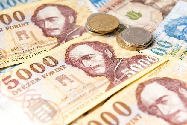 Węgierska waluta jeszcze nigdy nie była tak słaba... /©123RF/PICSEL