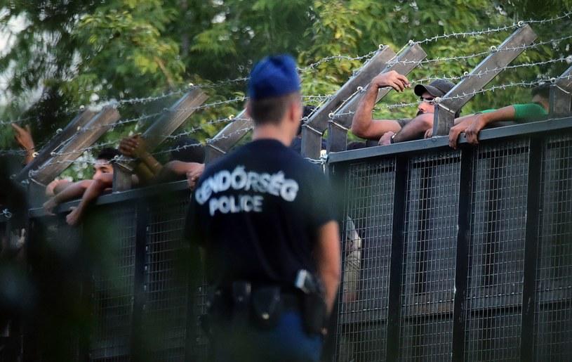 Węgierski policjant przed metalowym murem, który miał zatrzymać przepływ migrantów niedaleko węgiersko-serbskiej granicy, zdjęcie z września 2015 /AFP