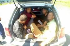 Węgry: 13-latek próbował przemycić ludzi. Jechał autem z polską rejestracją