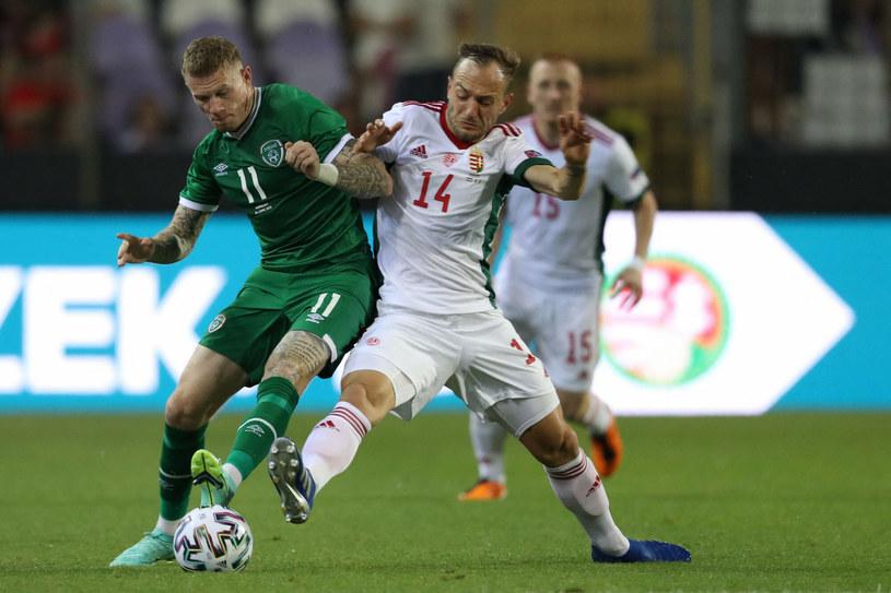 Węgry - Irlandia w meczu towarzyskim /Ferenc Isza /East News