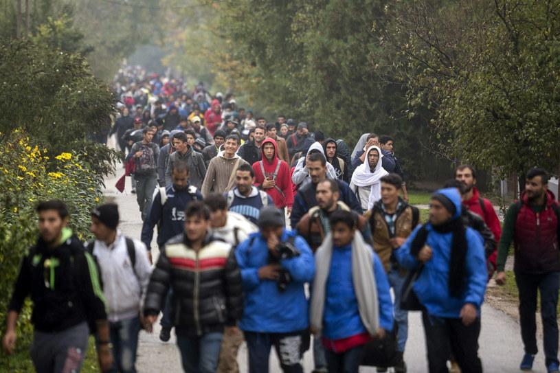 Węgry zdecydowały o zamknięciu granicy z Chorwacją /BALAZS MOHAI /PAP/EPA