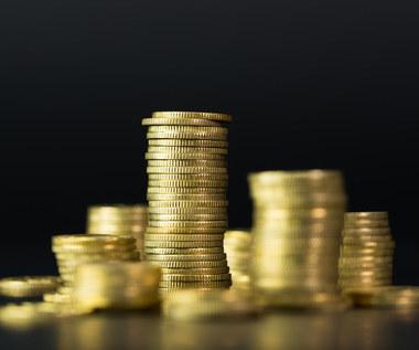 WEI: Polska musi zredukować wydatki o 90 mld zł, do wysokość deficytu strukturalnego